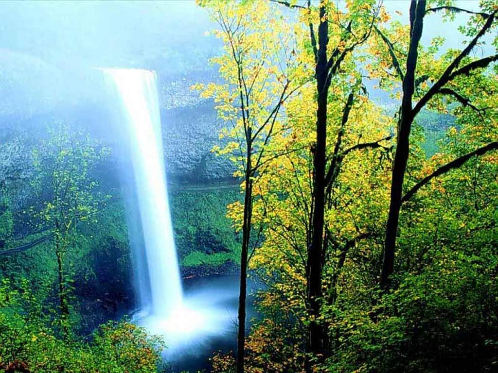 Nature Wallpaper: Spring Falls