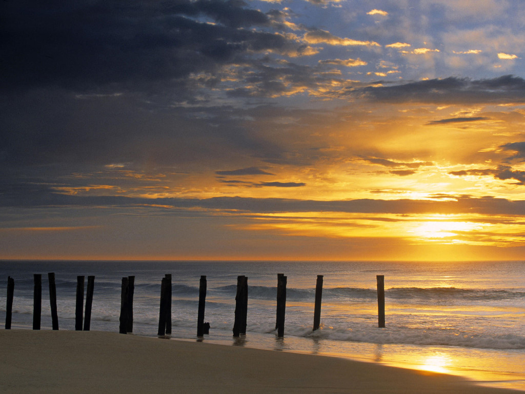 Nature Wallpaper: St. Clair Beach at Sunrise - New Zealand
