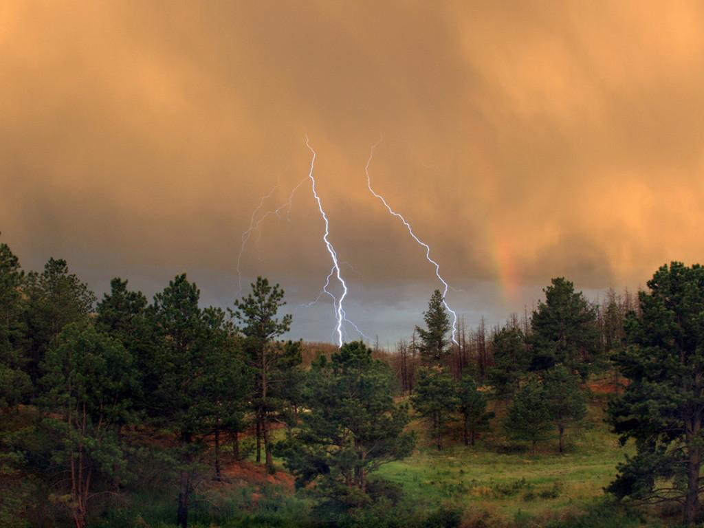 Nature Wallpaper: Summer Storm