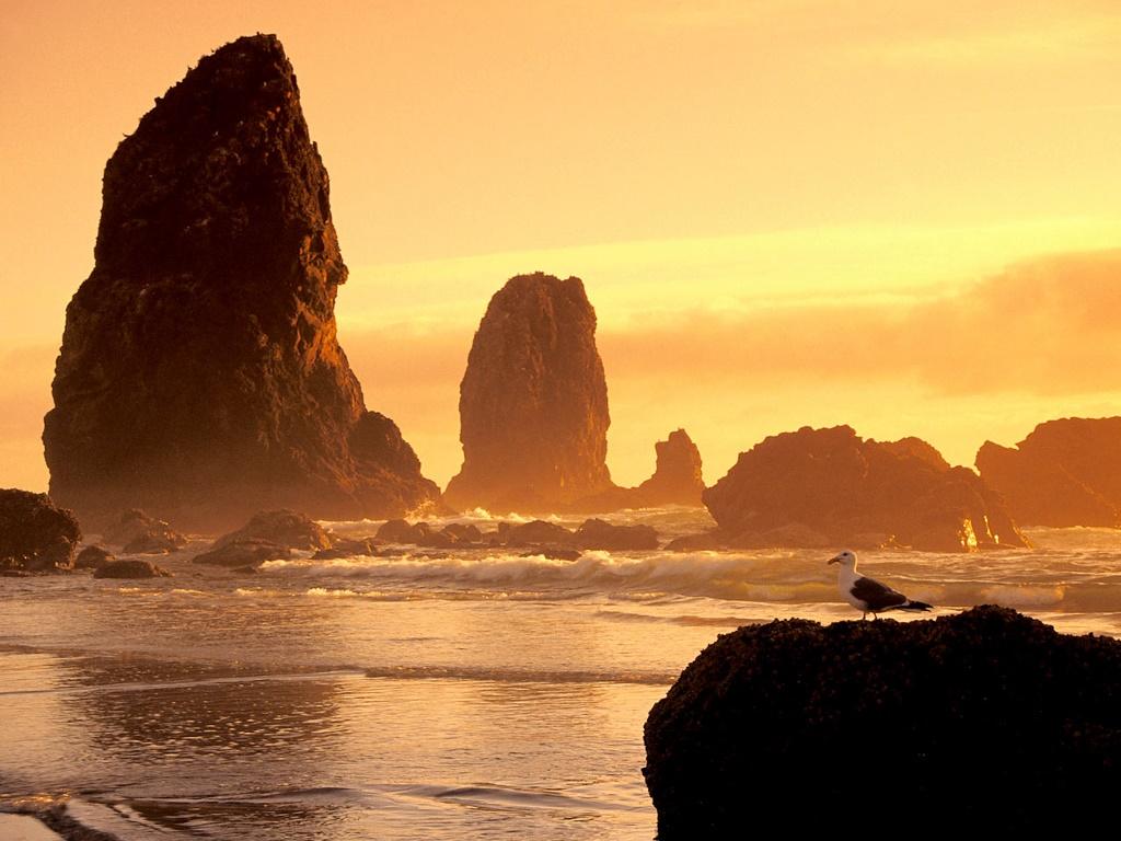 Nature Wallpaper: Sunset Beach