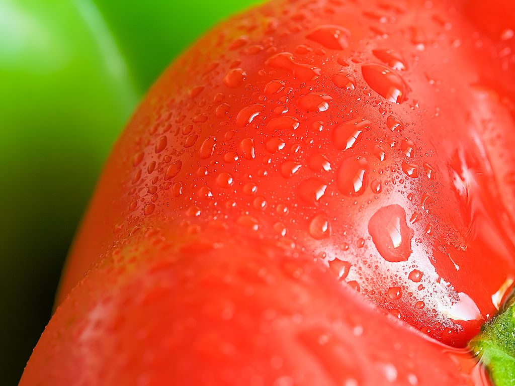 Nature Wallpaper: Tomato