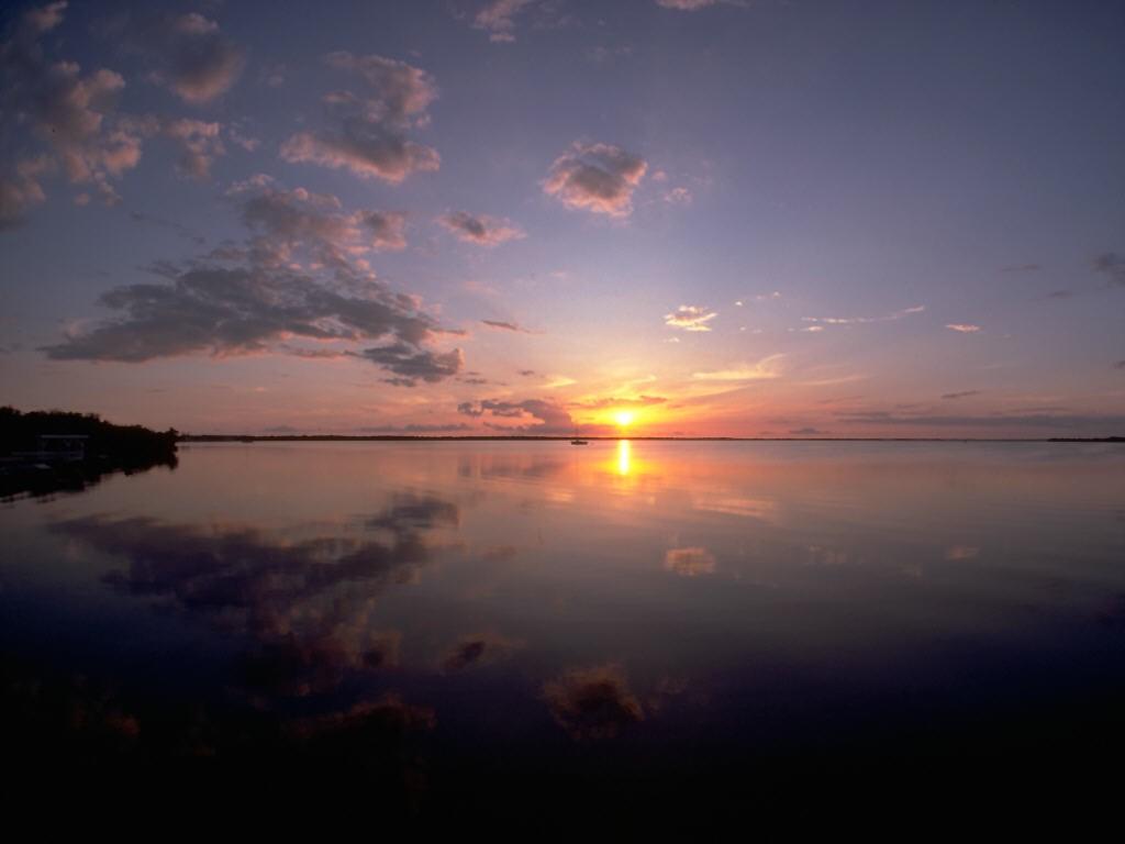 Nature Wallpaper: Tropical Sunset - Florida