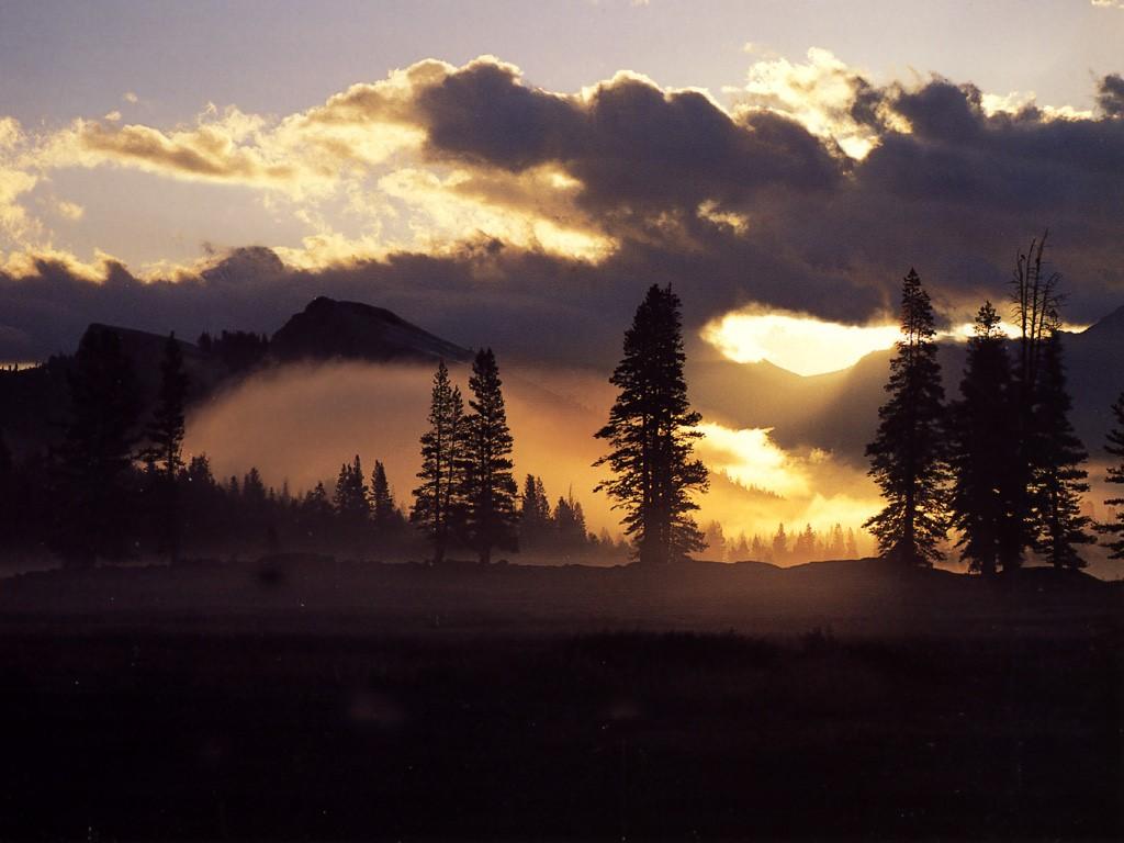Nature Wallpaper: Yosemite - Tuolumne Meadows