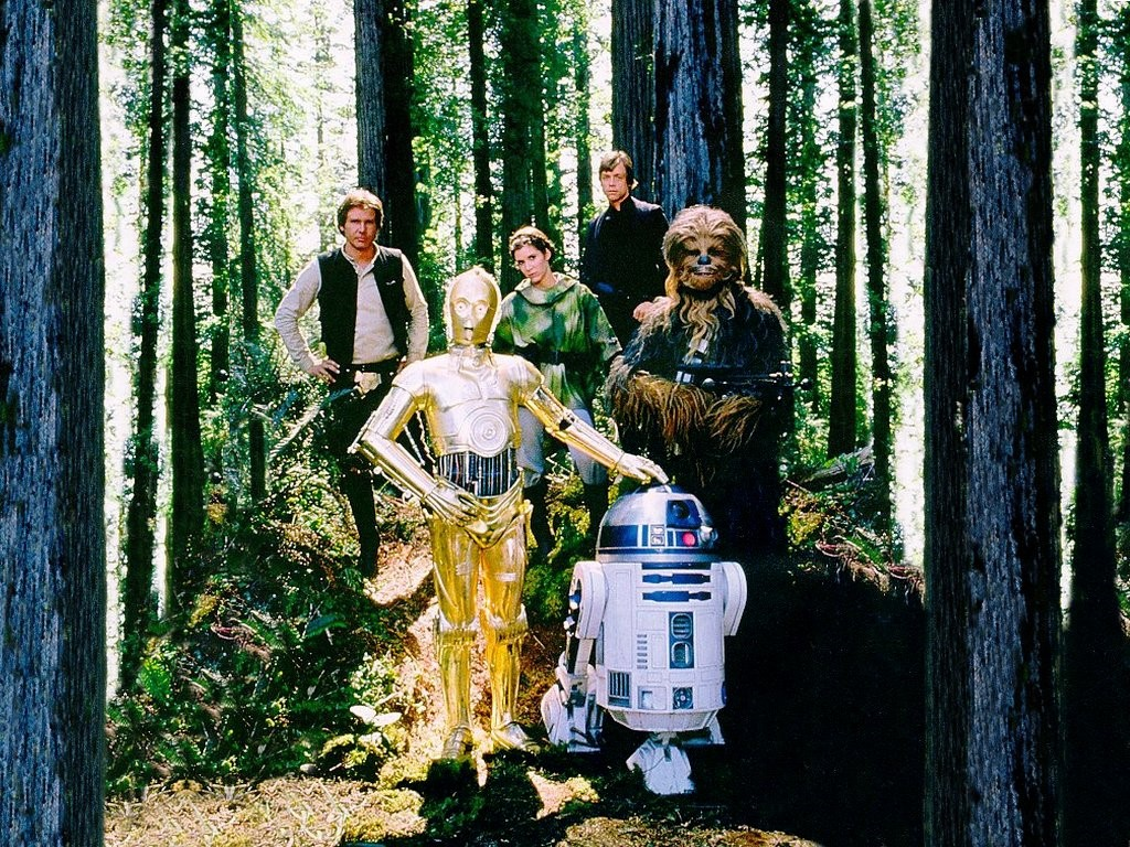 Star Wars Wallpaper: Endor Forest