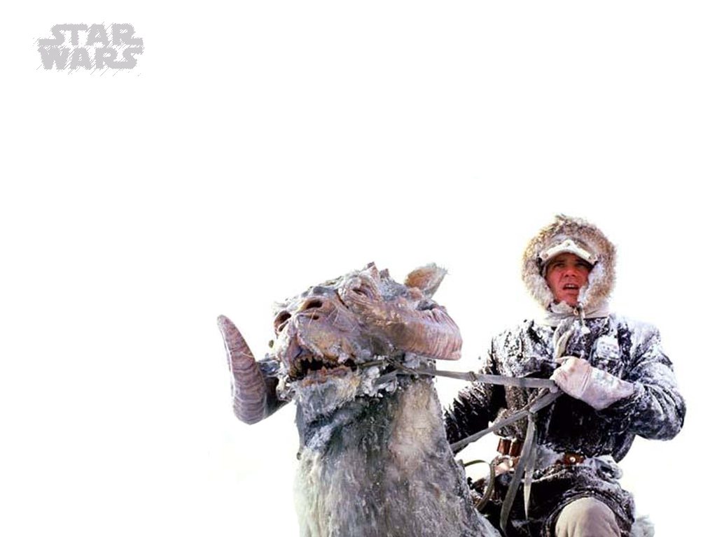 Star Wars Wallpaper: Han Solo - Snow Storm