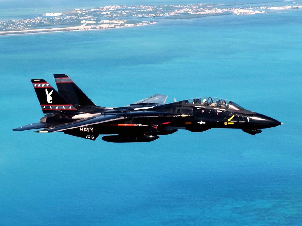 Vehicles Wallpaper: F-14 Tomcat