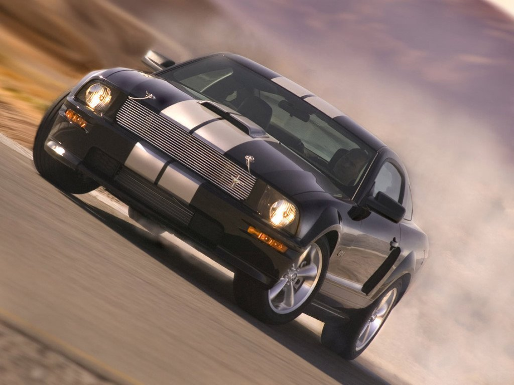 Vehicles Wallpaper: Ford Shelby GT
