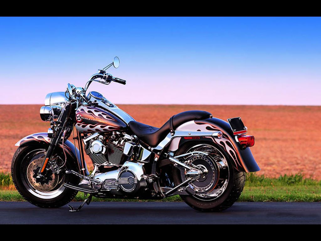 Vehicles Wallpaper: Harley Davidson - Fat Boy