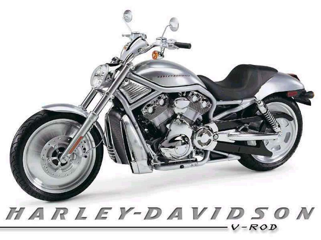 Vehicles Wallpaper: Harley Davidson