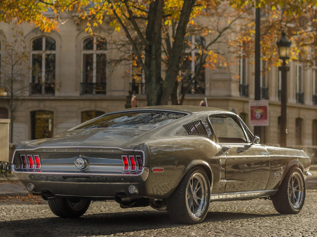 Vehicles Wallpaper: Mustang