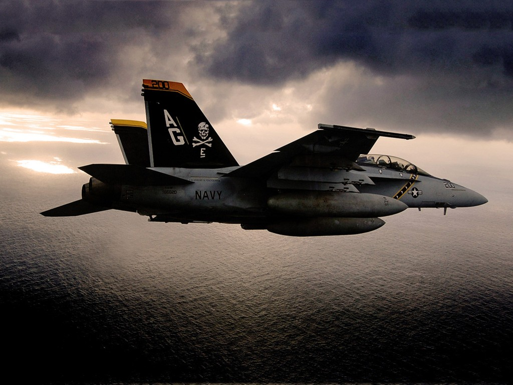 Vehicles Wallpaper: Jet Fighter