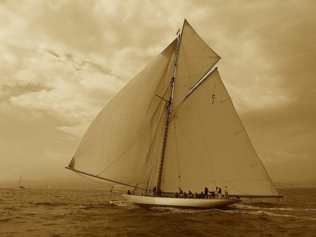 Vehicles Wallpaper: Sail Boat